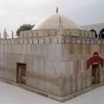 At the time of asr with the Ababeel doing Tawaf of Hazrat Syed Badiuddin Zinda Shah Madar (RA)